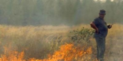 Rusia: disminuyó a la mitad el área afectada por el fuego