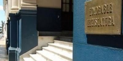 Audiencia pública en la Legislatura por irregularidades en adopciones